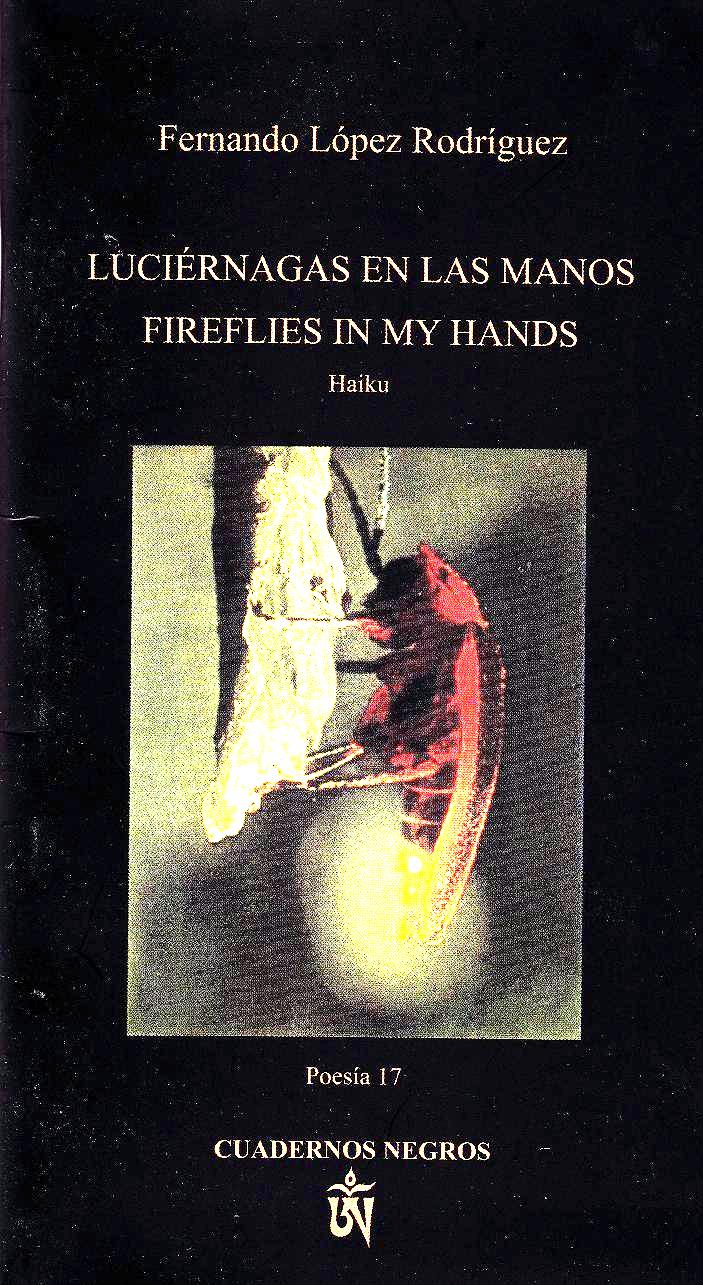 Fireflies in My Hands cover